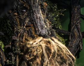 Treebeard bigature